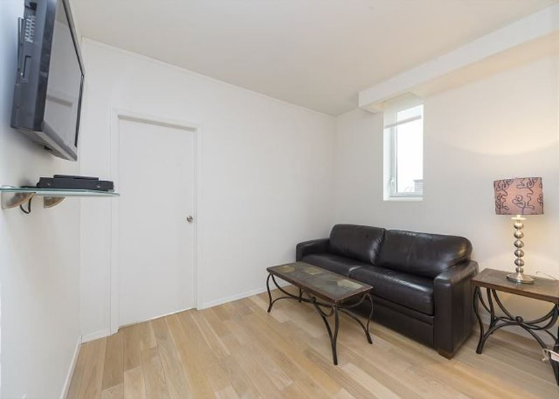 Bright and Fully Furnished 2 Bedroom Apartment in Brooklyn - Image 1 - New York City - rentals