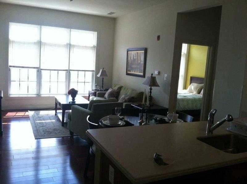 Stunning 2 Bedroom, 2 Bathroom Condo in Baltimore - Image 1 - Baltimore - rentals