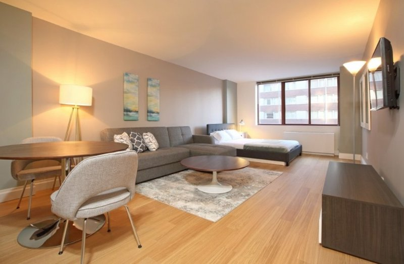 BEAUTIFUL, SPACIOUS AND LUXURIOUS STUDIO APARTMENT - Image 1 - New York City - rentals