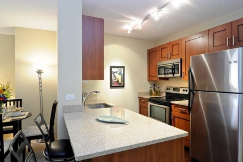 Cozy and Comfortable - 1 Bedroom, 1 Bathroom Apartment in Chicago - Image 1 - Chicago - rentals