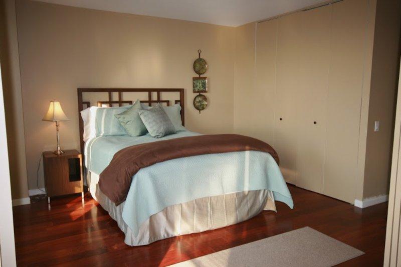 Amazing, Well Lit 1 Bedroom, 1 Bathroom Condo in CHicago - Image 1 - Chicago - rentals