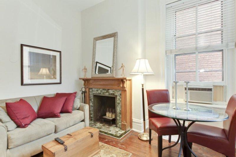 MODERN STUDIO APARTMENT IN WASHINGTON - Image 1 - Washington DC - rentals