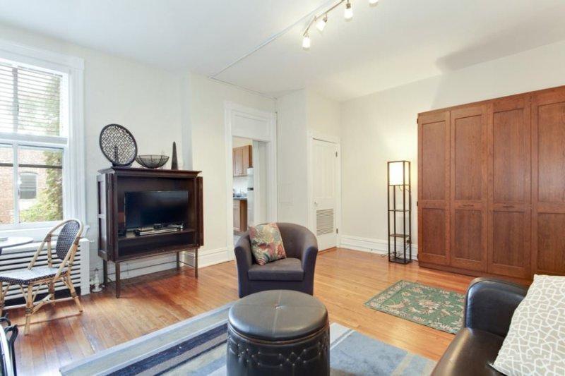 STUNNING AND FURNISHED STUDIO APARTMENT - Image 1 - Washington DC - rentals