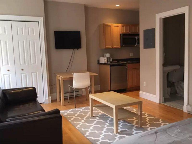 Plesant Studio Apartment in Boston - Fully Furnished - Image 1 - Boston - rentals