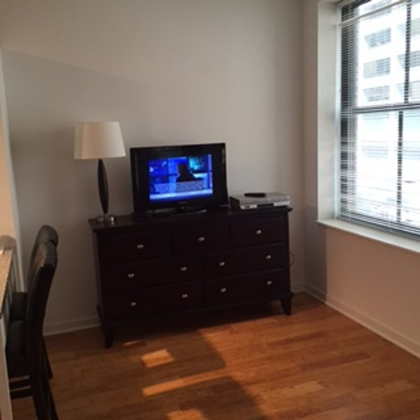 Sunny 1 Bedroom, 1 Bathroom Apartment in Chicago - Beautiful City Living - Image 1 - Chicago - rentals