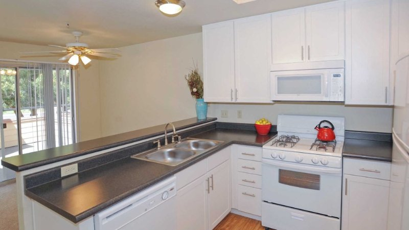 Well Designed for Comfort - 1 Bedroom, 1 Bathroom Apartment in Foster City - Image 1 - Foster City - rentals
