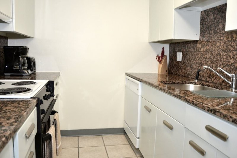 AMAZING 1 BEDROOM 1 BATHROOM FURNISHED APARTMENT - Image 1 - Boston - rentals