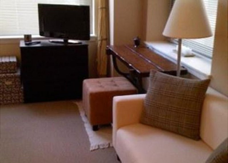 Furnished Studio Apartment at W Lake St & N Wells St Chicago - Image 1 - Chicago - rentals