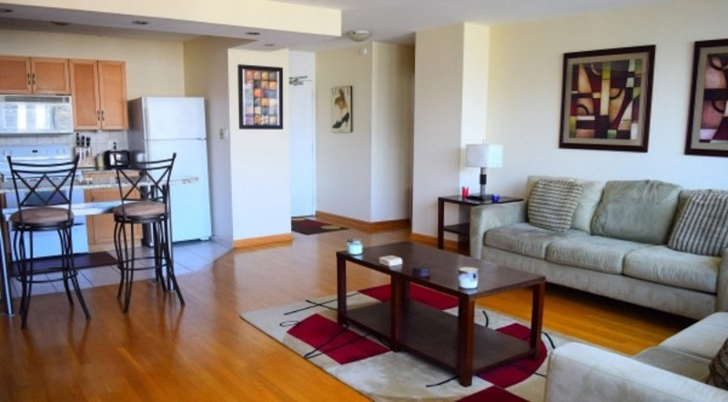 Furnished 1-Bedroom Apartment at W Goethe St & N Sandburg Terrace Chicago - Image 1 - Chicago - rentals