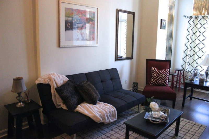 Posh Sun-Filled Apt near Downtown - Image 1 - Chicago - rentals