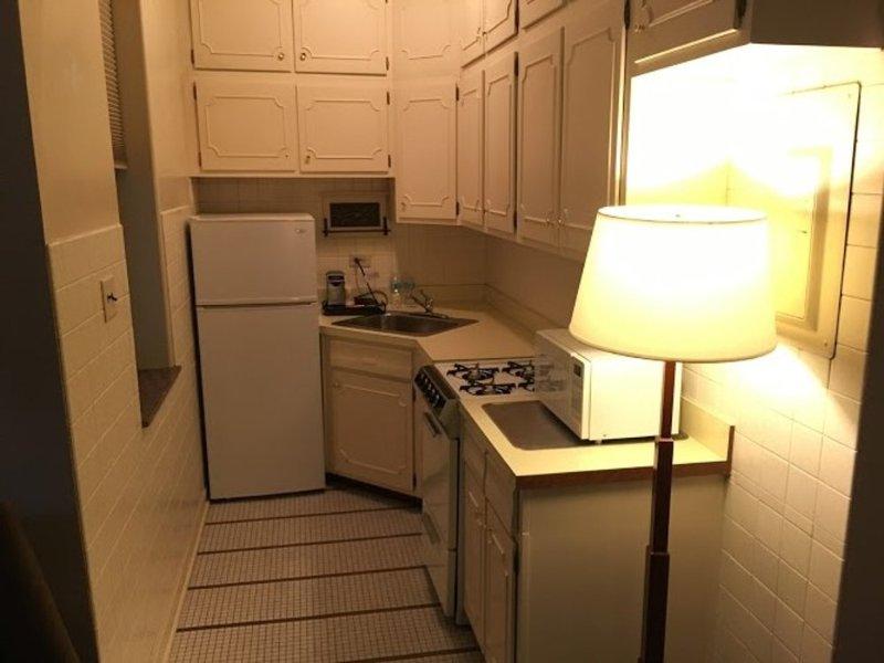 Gorgeous 1 Bedroom, 1 Bathroom Apartment in Chicago - Image 1 - Chicago - rentals