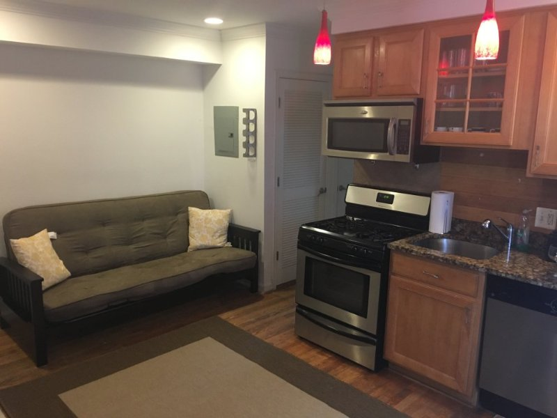Furnished 1-Bedroom Condo at Hawaii Ave NE & 1st St NE Washington - Image 1 - Chillum - rentals