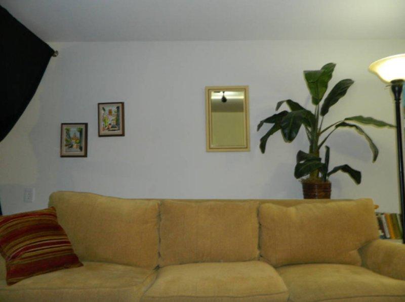 Furnished Studio Apartment at Oak St & Octavia Blvd San Francisco - Image 1 - San Francisco - rentals