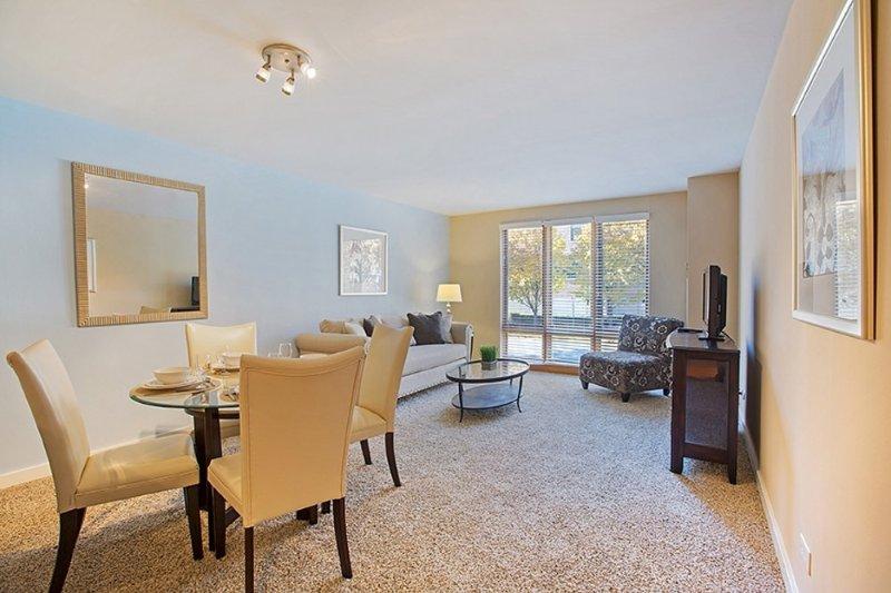 Furnished 1-Bedroom Apartment at Lake St & N Francisco Terrace Oak Park - Image 1 - Oak Park - rentals