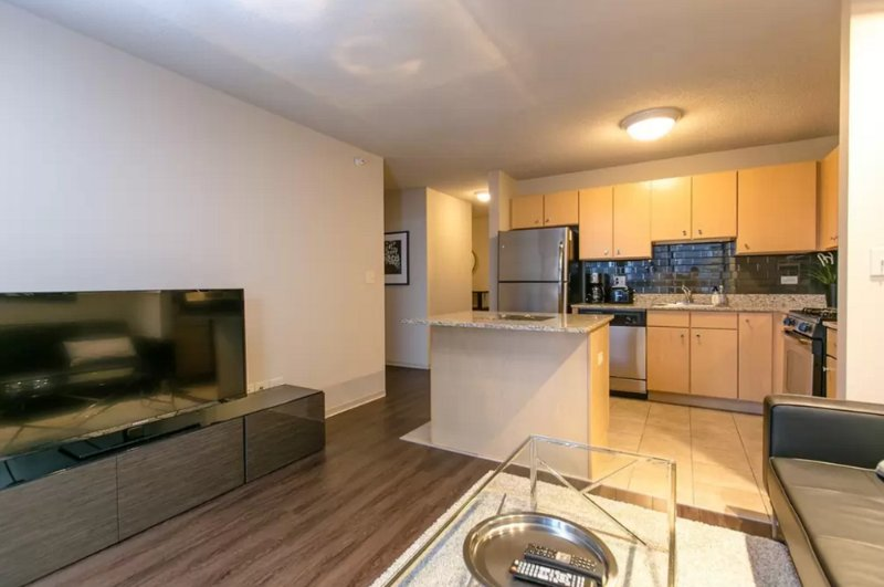 Furnished 1-Bedroom Apartment at E Randolph St & N Columbus Dr Chicago - Image 1 - Chicago - rentals