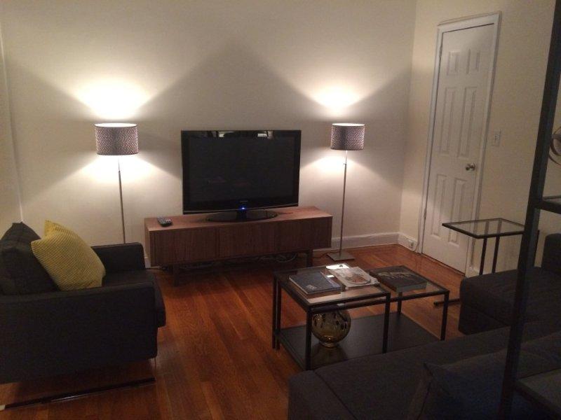 Furnished Studio Condo at 1st Avenue & E 54th St New York - Image 1 - New York City - rentals