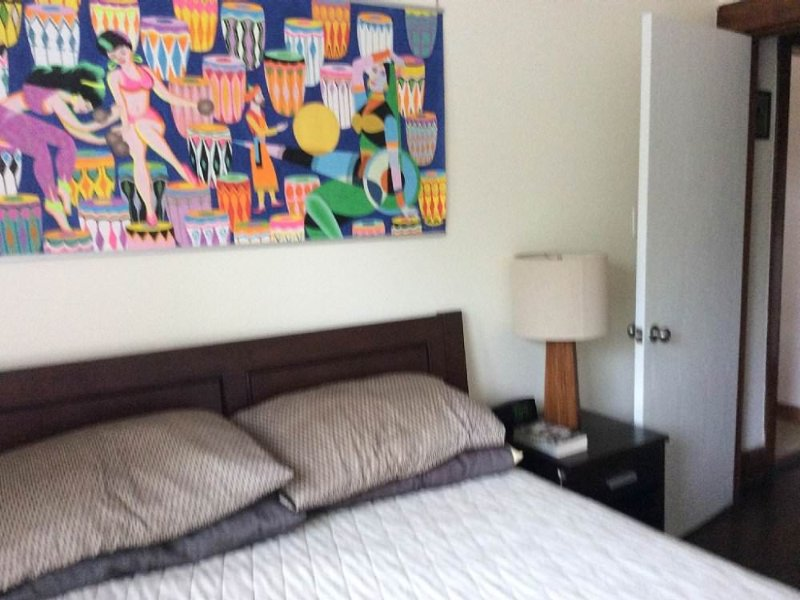 Furnished 2-Bedroom Apartment at N Clark St & W Thome Ave Chicago - Image 1 - Chicago - rentals