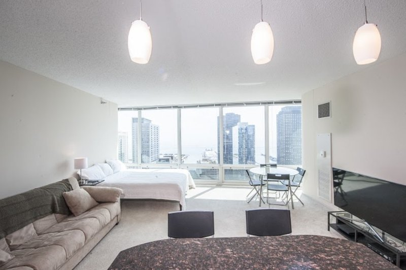 Furnished Studio Apartment at E Ohio St & N McClurg Ct Chicago - Image 1 - Chicago - rentals