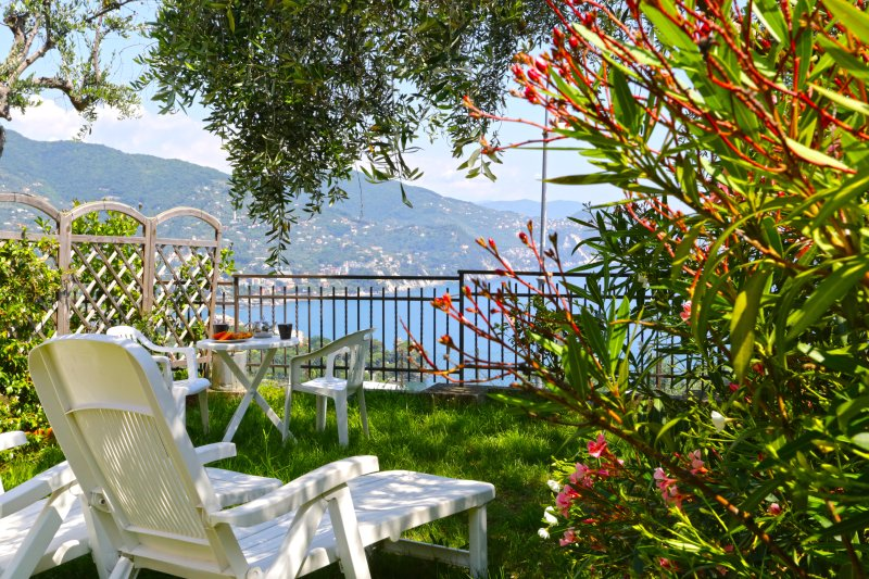 Garden with solarium, table for outdoor dining and sea view - Andromeda 1stFL,Breathtaking view on Tigullio gulf - Rapallo - rentals