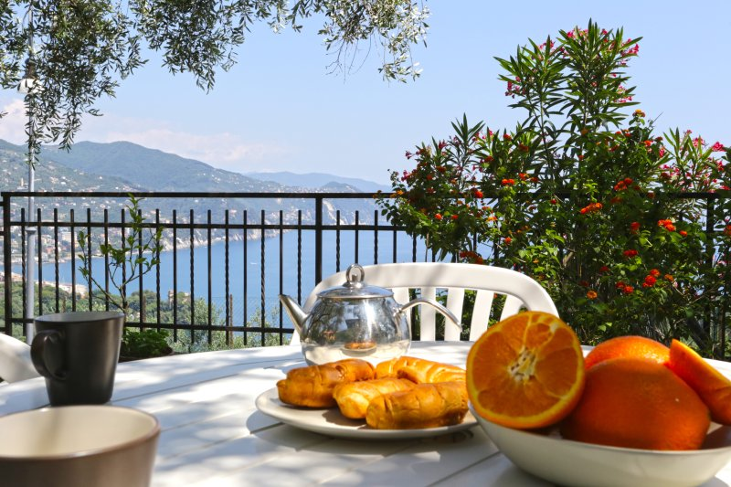 Garden with table for outdoor dining and sea view - Andromeda GRFL,Breathtaking view on Tigullio gulf - Rapallo - rentals