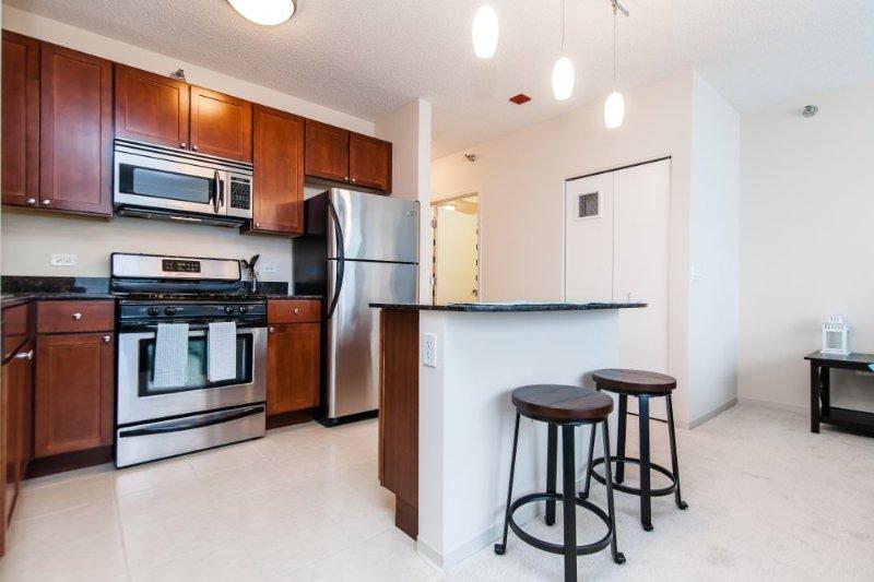 SPACIOUS, CLEAN AND ELEGANT STUDIO APARTMENT - Image 1 - Chicago - rentals