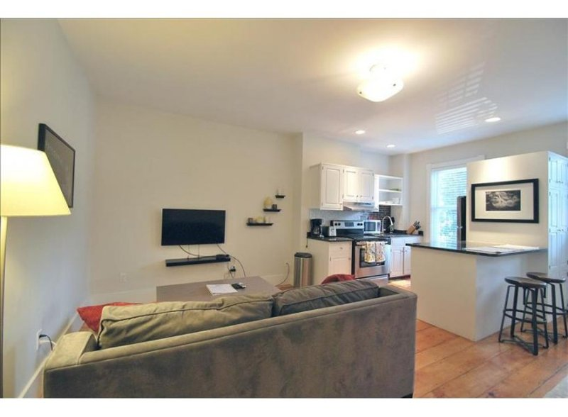 BEAUTIFULLY FURNISHED, CHARMING AND COZY 2 BEDROOM, 1 BATHROOM APARTMENT - Image 1 - Boston - rentals