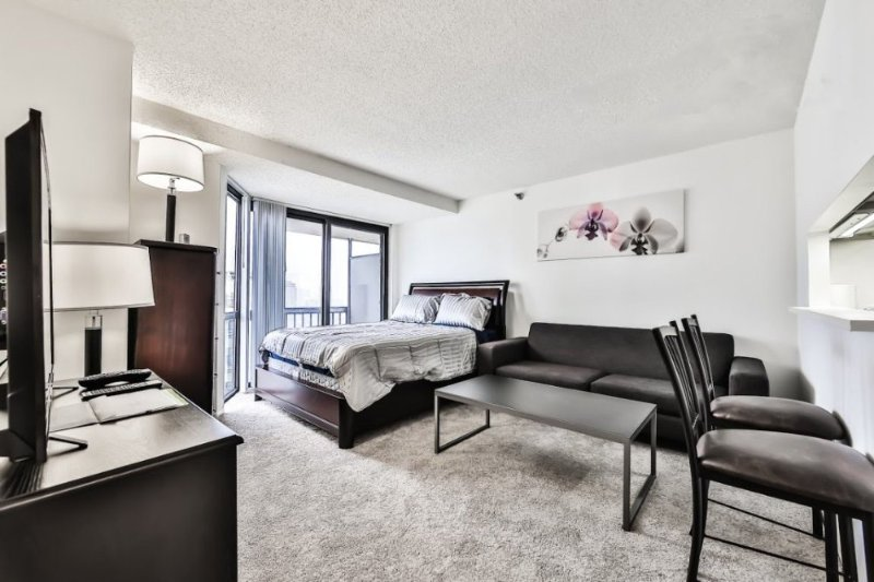 Furnished Studio Apartment at N Dearborn St & W Elm St Chicago - Image 1 - Chicago - rentals