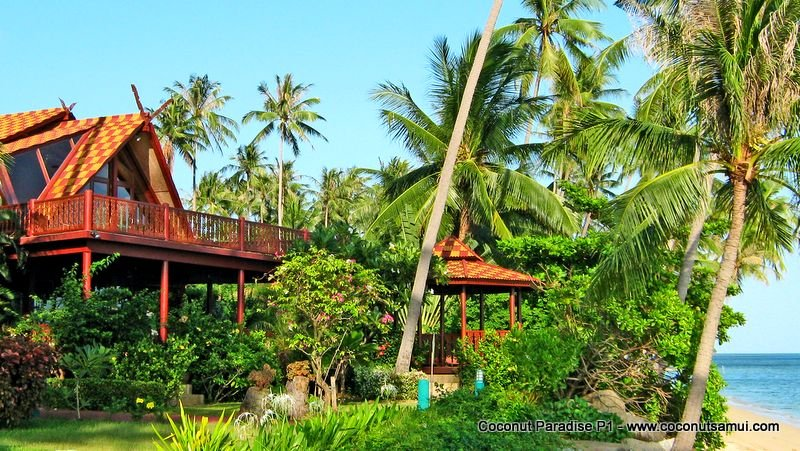 Beachfront Holiday Villa for Rent: Coconut Paradise P1 - Image 1 - Koh Samui - rentals