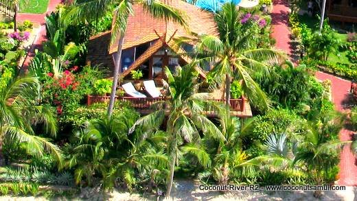 Beachfront Holiday Villa for Rent: Coconut River R2 - Image 1 - Koh Samui - rentals