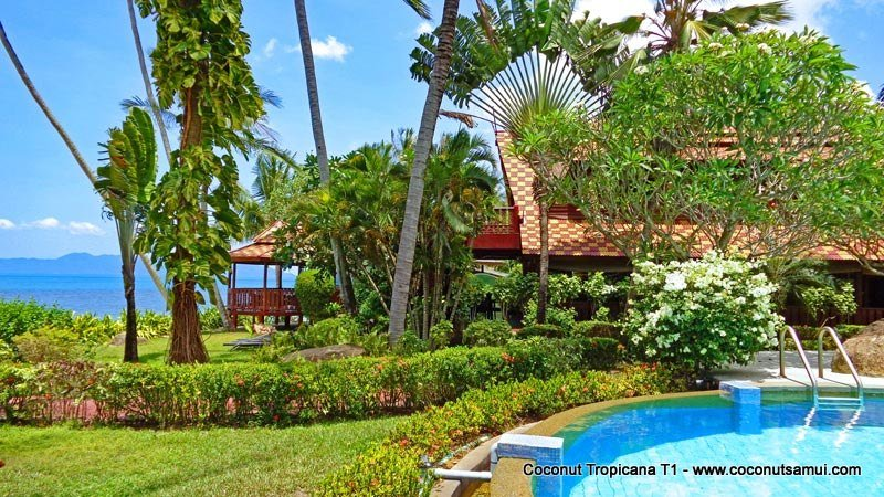 Beachfront Holiday Villa for Rent: Coconut Tropicana T1 - Image 1 - Koh Samui - rentals
