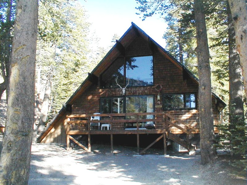 Chalet #4 in the summer - Ski in/Ski out  Slope side cabin - Chalet #4 - Mammoth Lakes - rentals
