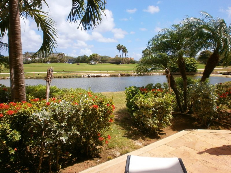 Your picturesque serene landscaping view of the 9-hole golf course! - Divi Golf Terrace One-bedroom condo - DR06 - Oranjestad - rentals