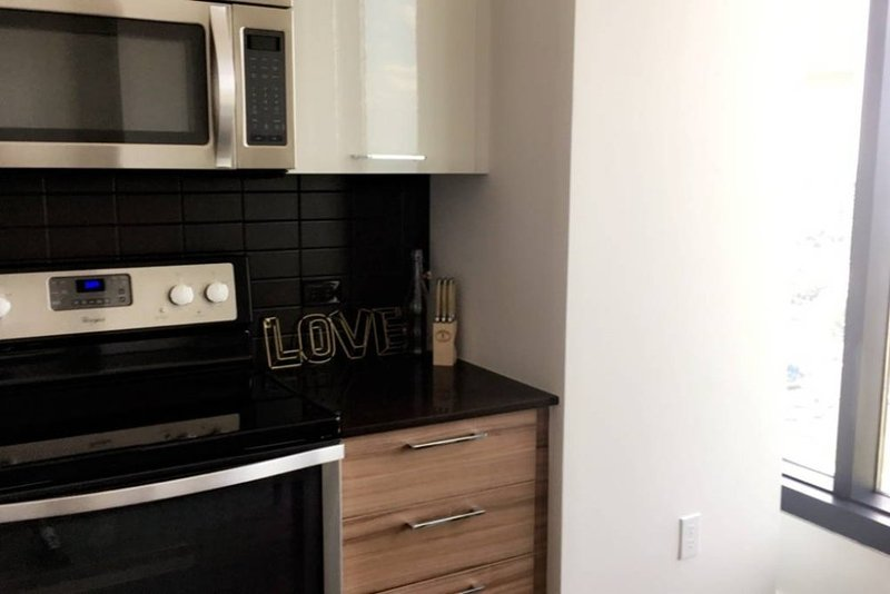 Furnished 1-Bedroom Apartment at Westpark Dr & Tysons One Pl Tysons - Image 1 - Tysons Corner - rentals