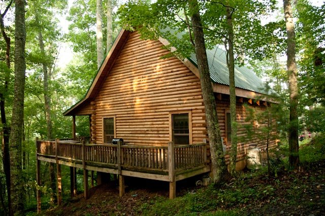 View of cabin - Secluded Log Cabin on organic farm, trout stream - Grassy Creek - rentals