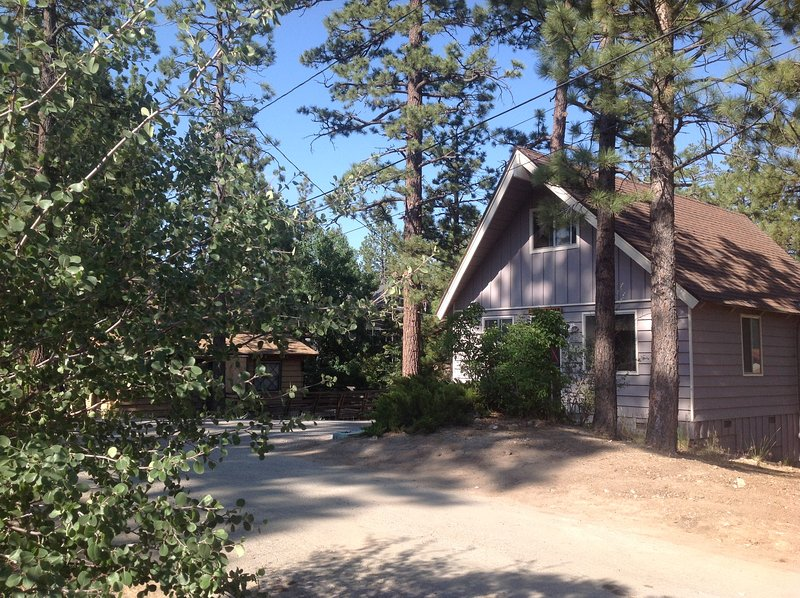 Cozy Cabin By The Lake, Family And Pet Friendly - Image 1 - Big Bear Lake - rentals