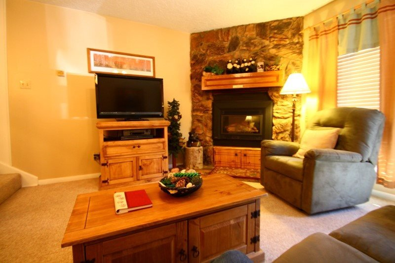 Valley Condos #111 - WiFi, Washer/Dryer, Community Hot Tubs, Playground, Creek - Image 1 - Red River - rentals