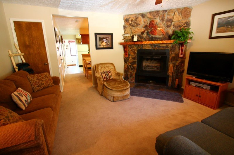 Valley Condos #116 - King Bed, WiFi, Washer/Dryer, Community Hot Tubs, Playground, Creek - Image 1 - Red River - rentals