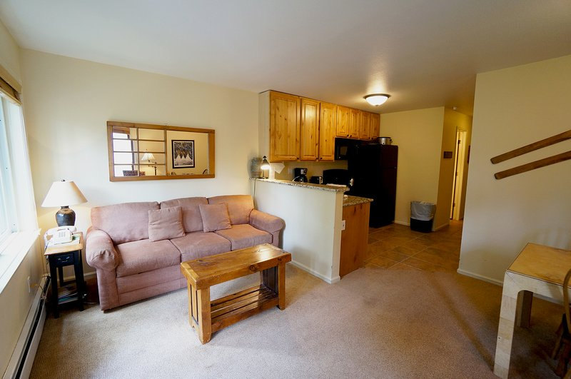 Comfortable  1 Bedroom  - 1243-117232 - Image 1 - World - rentals