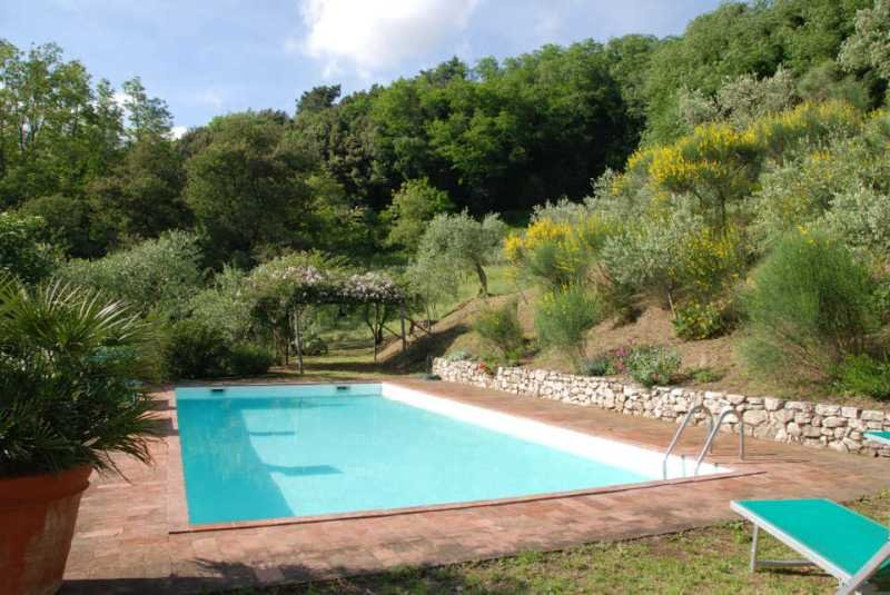 - Damiano - Lucca - rentals