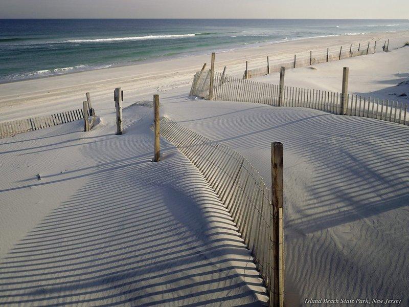 SPACIOUS and CLOSE to BEACH!  30A - Image 1 - Santa Rosa Beach - rentals