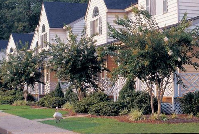4 BDR townhouse on Powhatan Plantation, Sleeps 12 - Image 1 - Williamsburg - rentals