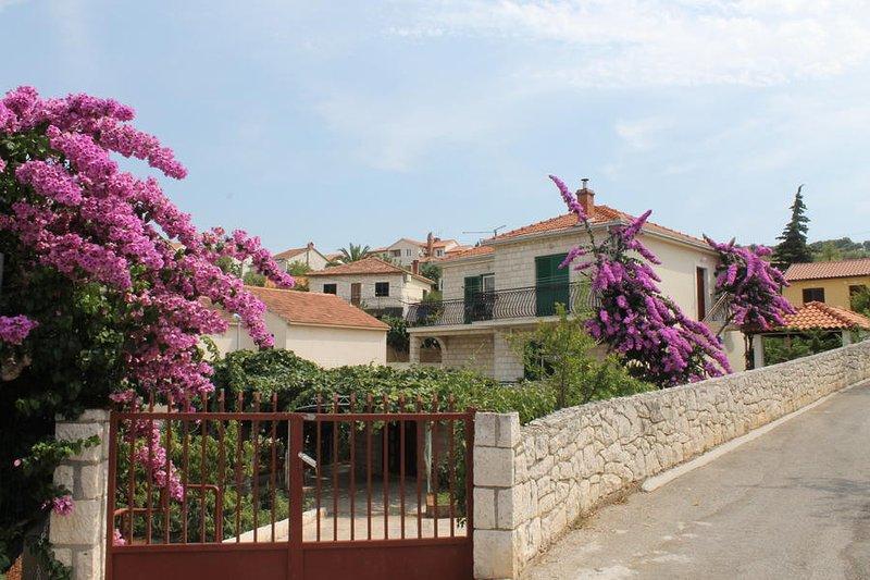 house - 1670  A2 (3) - Supetar - Supetar - rentals