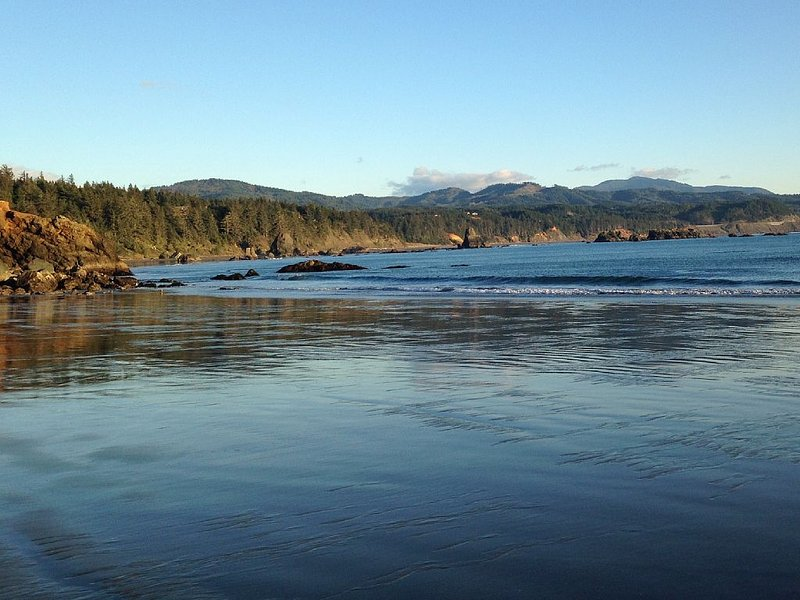 Hop to it from The Lily Pad - Image 1 - Port Orford - rentals