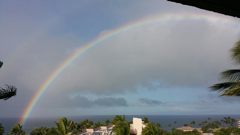 Maui Rainbow - Kihei Akahi - 5th floor Ocean View Condo - Kihei - rentals