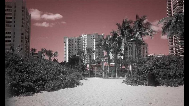 View of Building from Beach - Beautiful Completely Re-Modeled Condo across Beach - Bay Harbor Islands - rentals