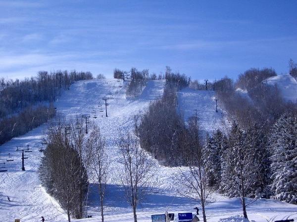 4 Bed Blue Mountain Loft #B1 - Image 1 - Blue Mountains - rentals