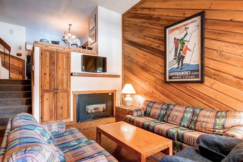 Cedars 47 - Ski-In/Ski-Out - Image 1 - Breckenridge - rentals
