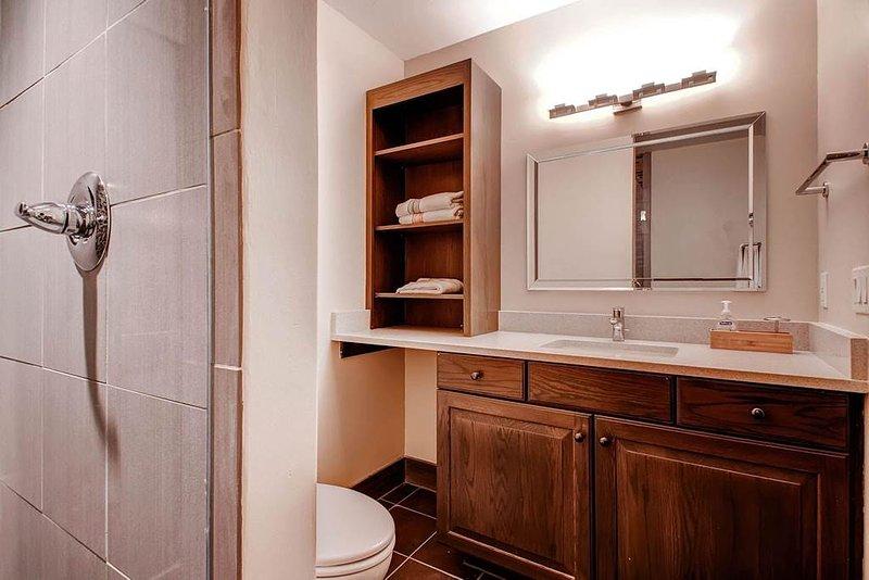 Heaven's View - Private Home - Image 1 - Breckenridge - rentals