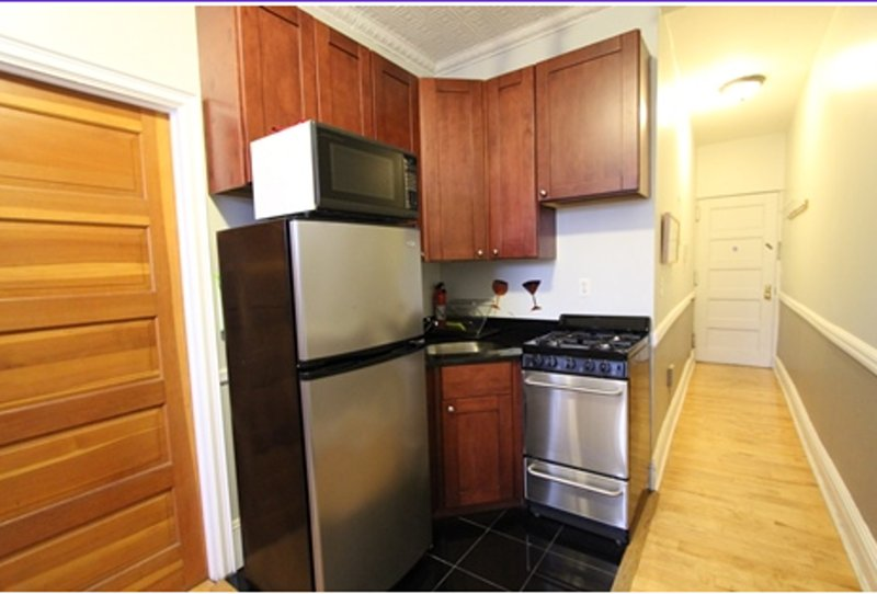 BEAUTIFUL FURNISHED 1 BATHROOM 1 BEDROOM APARTMENT - Image 1 - New York City - rentals