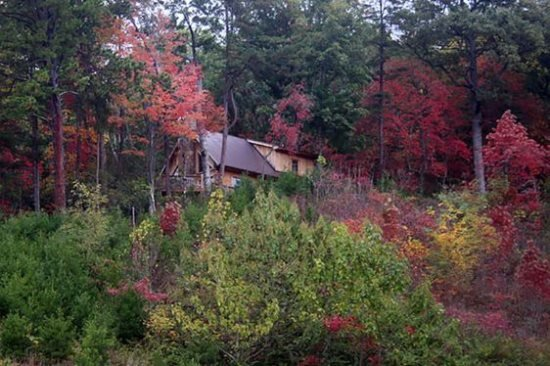 Rocky Ridge at Deep Creek - Delightful Log Cabin Minutes from Waterfalls, Fishing, and Hiking - Image 1 - Bryson City - rentals